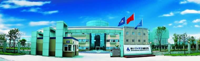 四川升和药业股份有限公司邛崃制药项目